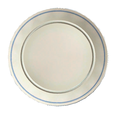 File:Clean white plate.png