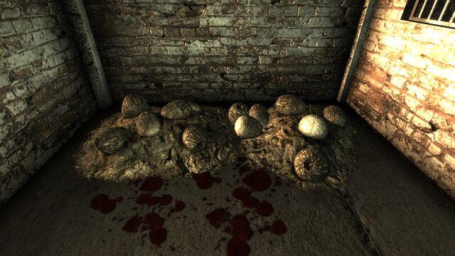 File:Deathclaw eggs AdamsAFB.jpg