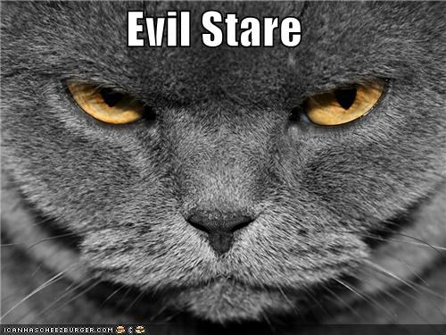 File:Evilstare.jpg