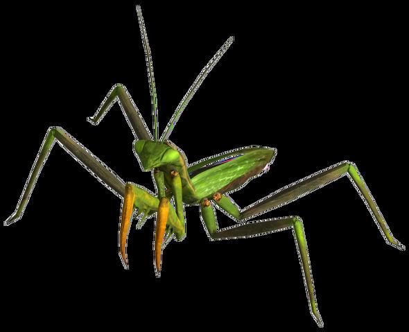 File:Giant mantis.png