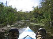 Kayak everglades feet-1024x768