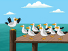 Seagullfood