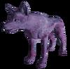 Lone Coyote
