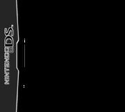 Nintendo DS deluxe