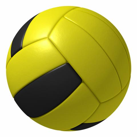 File:Dodgeball MSM Wii.png