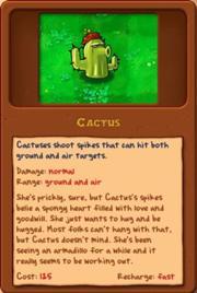 File:Cactus.jpg