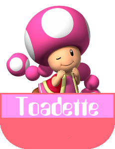 File:Toadette MR.png