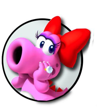 File:Bir logo.png
