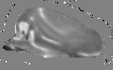 File:Metal Wario Cap SMDR.png