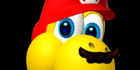 New Super Mario Bros. Inside Out!/Gallery