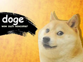 DogeSSBA