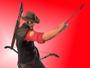 TAS Sniper