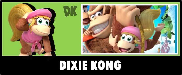 DixieKong USBIV