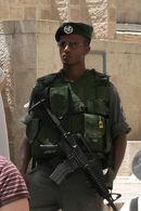 Israeli Border Guard Police 2254c