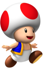 Toad NSMP