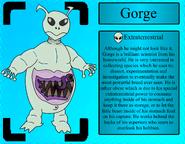 GorgeProfile