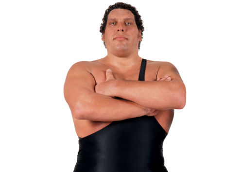 IconAndre the Giant
