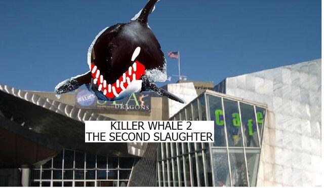 File:Killer Whale 2.jpg