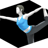 Tkr wii fit trainer