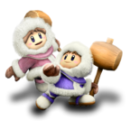 Ice Climbers Icon SSB5