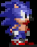 Mystery Mushroom Sonic