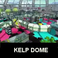 KelpDome dojo