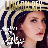 Meet Me In The Pale Moonlight single
