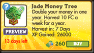 Jade Money Tree Market Info