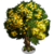 Aromita Tree-icon
