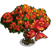 Red Cassia Tree-icon