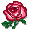 Fire & Ice Rose-icon