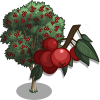 Ash Tree-icon.png