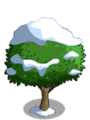 Wax Apple7-icon