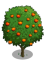 Blood Orange Tree2-icon.png