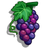 Grape-icon.png