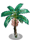 Date Tree4-icon