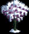 Plum8-icon