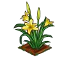 Perfect Daylily-icon