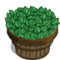 Peppermint Bushel-icon