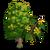 American Liden Tree-icon