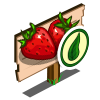 Organic Strawberry Mastery Sign-icon