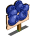Blueberry Mastery Sign-icon