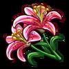Stargazer Lilies-icon
