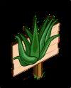 Aloe Vera Mastery Sign-icon
