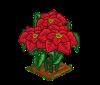 Perfect Poinsettia-icon