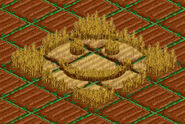 Crop Circle IV