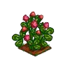 Perfect Red Clover-icon