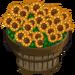 Sunflowers Bushel-icon