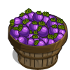 Purple Tomato Bushel-icon