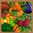 Vegetable virtuoso 48